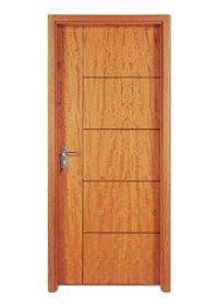 Flush Door PP005T