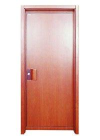 Flush Door PP014