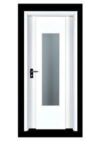 Flush Door PP004-3