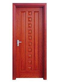 Flush Door P009